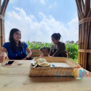 Swarga Duren, Sensasi Menikmati Durian Nusantara dan Mancanegara di Tengah Persawahan