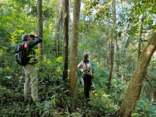Tim PROFAUNA saat meninjau kondisi Kawasan Hutan Lindung RPH Sekar.(Foto: PROFAUNA).