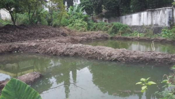 Kolam ikan yang dibangun Dinas Lingkungan Hidup Kota Batu dekat kawasan konservasi sumber mata air Umbul Gemulo. (Foto: istimewa)