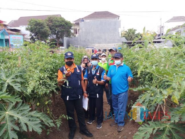 Tim juri lomba Kampung Bersinar saat melihat kebun aktif milik RW 09 Kelurahan Merjosari (foto: Hendra Saputra/MalangTIMES)