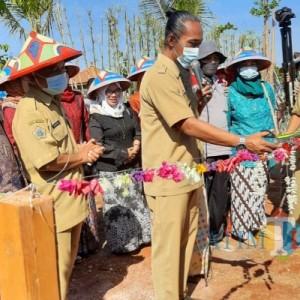Sumbang Pendapatan Desa Rp 3,4 Miliar, Sekapuk Luncurkan Wisata Baru Monumen Ratu Agro Kebun Pak Inggih