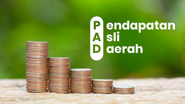 Ilustrasi PAD (Foto: Istimewa)