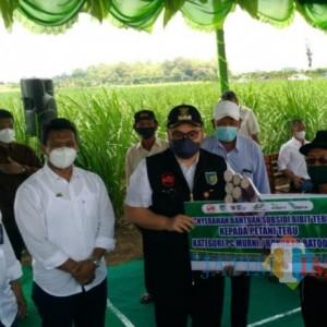 Wujudkan Petani Sejahtera, Bupati Kediri Bersama Holding Perkebunan Nusantara II Serahkan Bantuan Bibit ke Petani Tebu