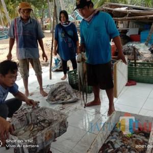 Nelayan Kondangmerak Bisa Tentukan Harga Jual Hasil Tangkapannya Sendiri
