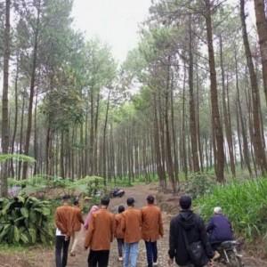 Dongkrak Sektor Pariwisata di Dusun Precet, KKNT Unikama Kembangkan Lokasi Hutan Pinus
