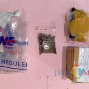 Terima Paket Ganja 8,72 Gram, Warga Sumenep Ditangkap Polisi
